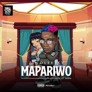 art cover for mapariwo by zinoleesky