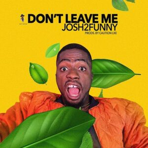 Josh2funny dont leave me art cover