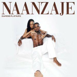 [Music] Diamond Platnumz – Naanzaje Mp3 Download