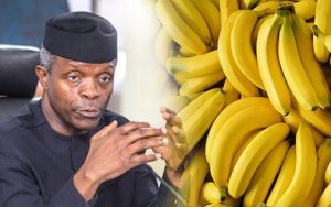 Video – Vice President Of Nigeria 'Osibanjo' Eating Banana In Class With Pupils As a sign of Love